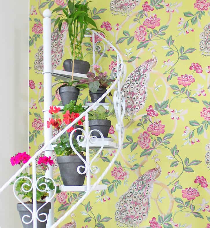 Spiral Staircase Display Stand diy plant stand makeover and a sneak peek of my new wallpaper 25